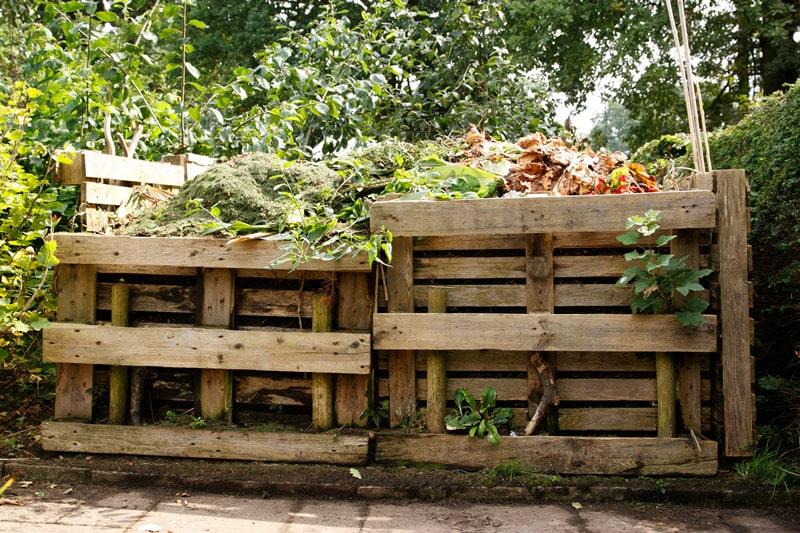 All You Need to Know About Compost Bins in Backyard