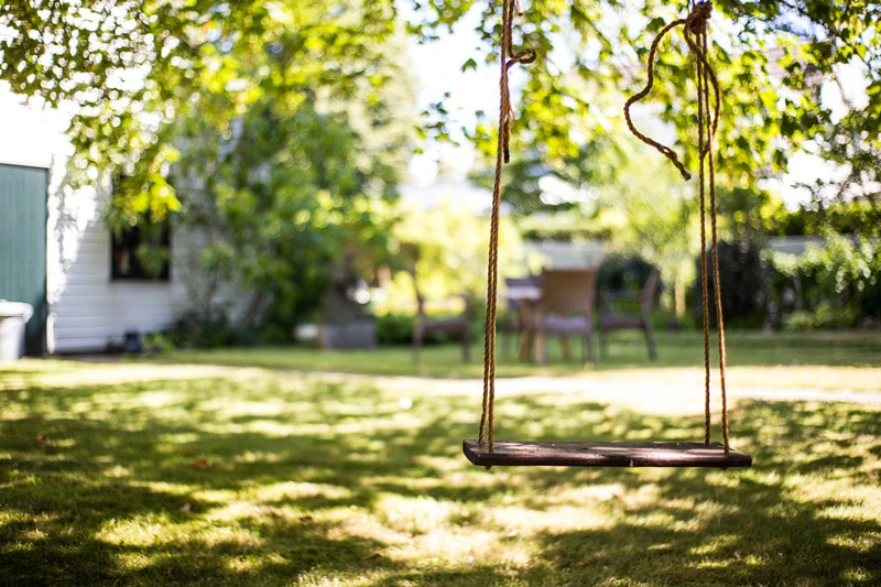 What You Should Know About Backyard Tree Swings