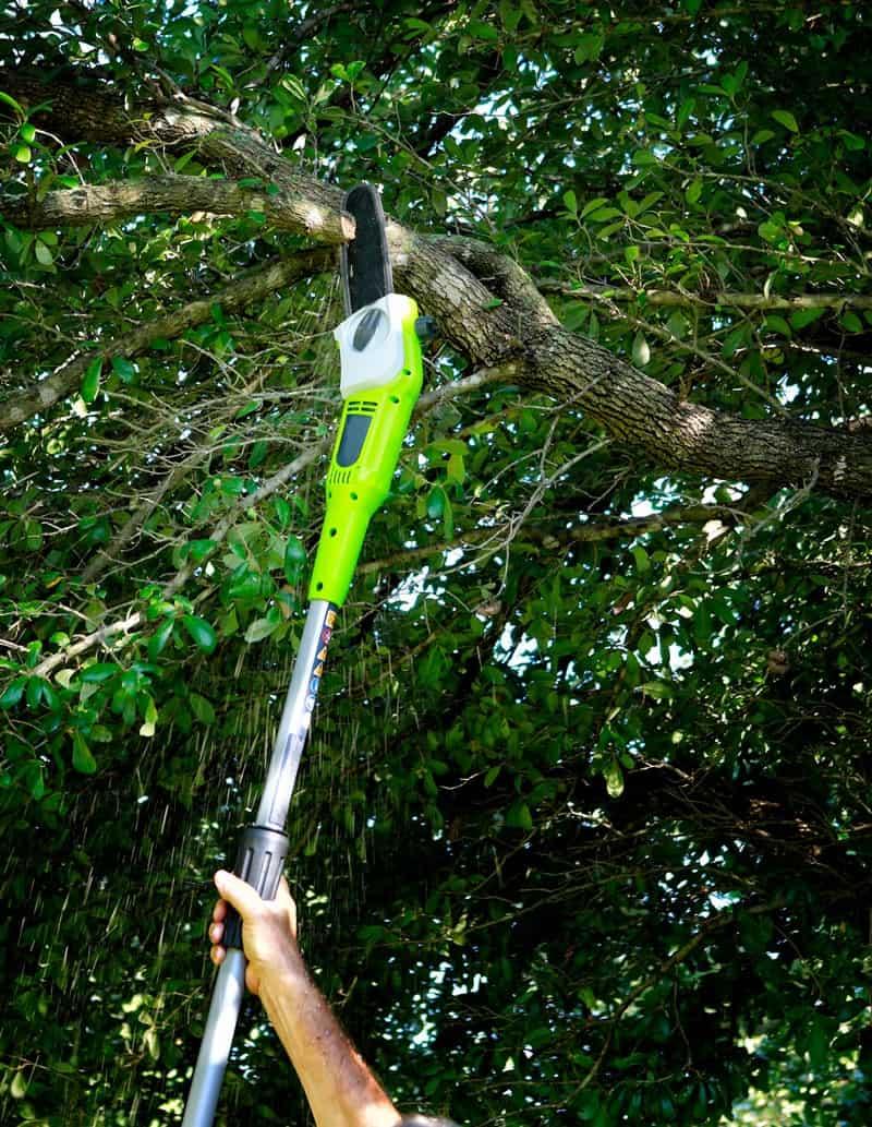 Best Cordless Pole Saws