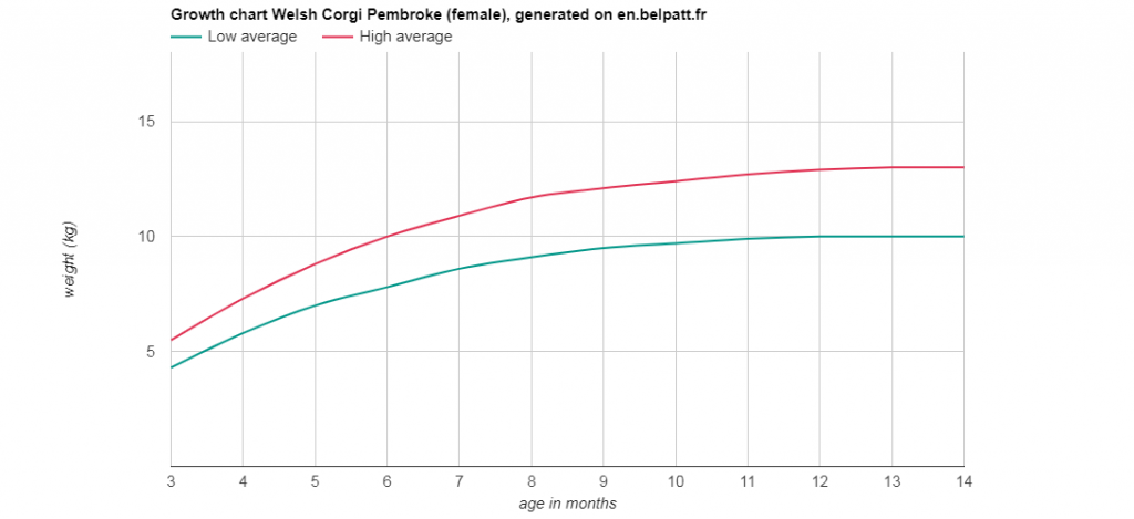 Growth-graph-of -Corgi-Female