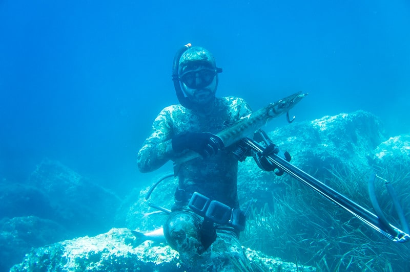 All You Need to Know About Spearfishing In Malta