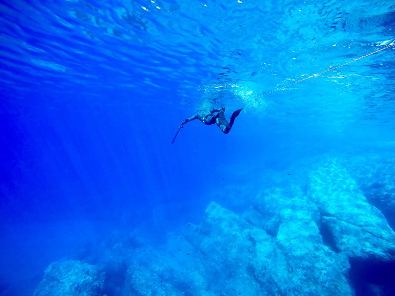 All You Need to Know About Spearfishing In Hawaii