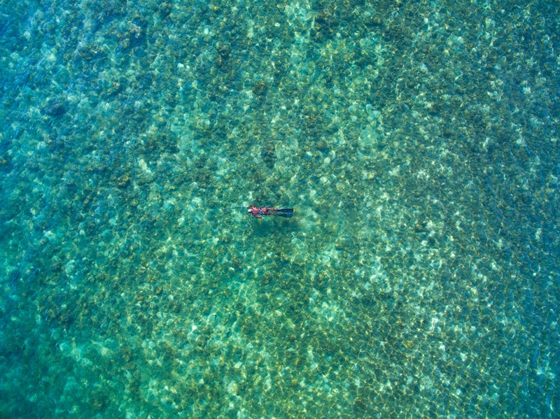 Hawaiian Sling Tips for Spearfishers You Should Know