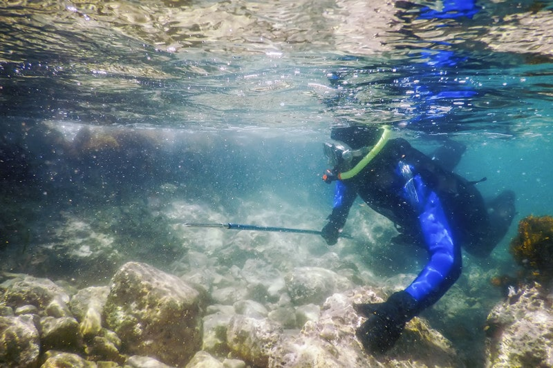 Spearfishing Tips for Beginners You Should Know