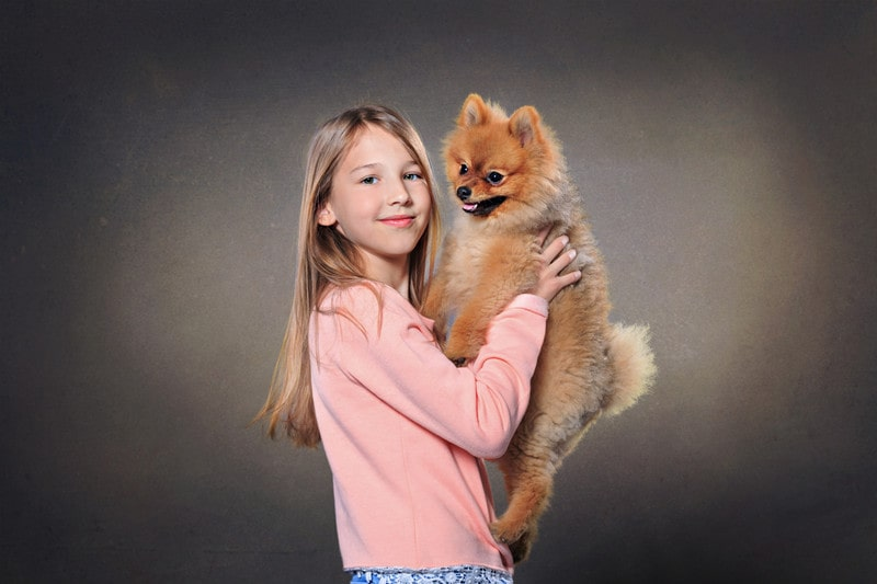 Are Pomeranians Good with KidsAre Pomeranians Good with Kids