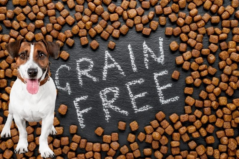 Grain-free Dog Food Good for Dogs