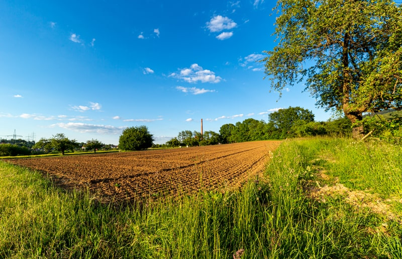 Are Small Farms Really More Productive Than Large Farms