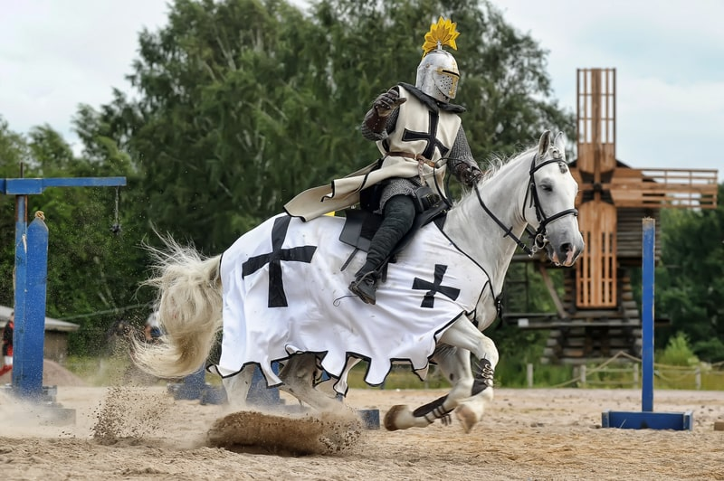 What Horses are Used in War?